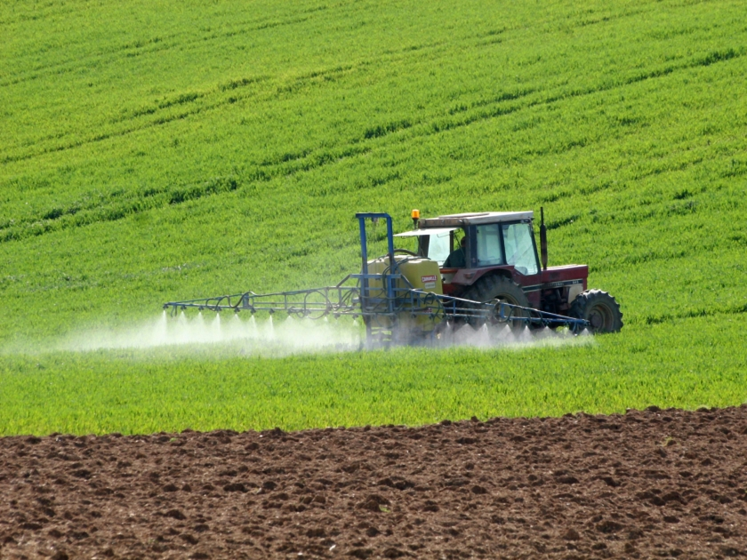 Agro é único setor da economia com crescimento na pandemia, diz IBGE